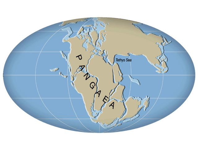 (200 million years ago) Pangaea Starts to Break Apart