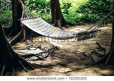 El descobriment del hammock