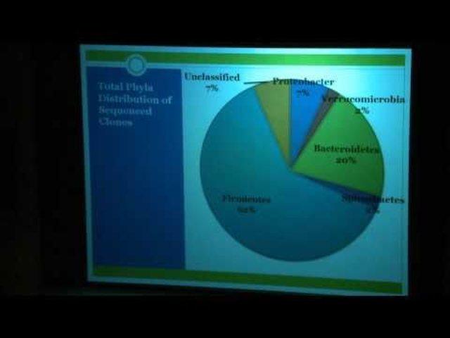 (3.8 BYA)  Bacteria Diversity