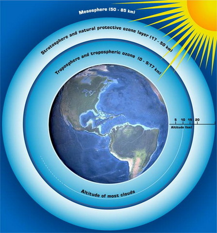 (600 mya) Protective ozone layer in place