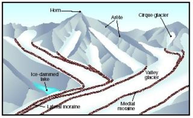 Major glaciation period begins (800 mya)