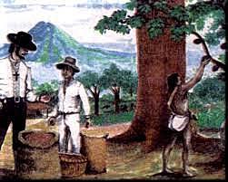 El Salvador la ruta de la conquista en la expedición