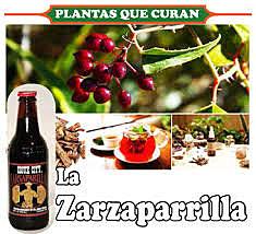 Historia Colonial ''La Zarzaparrilla''