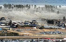 Tohoku  Earthquake  (Japan)