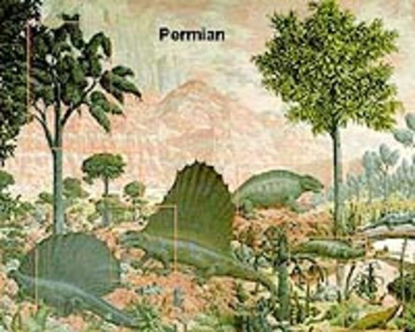 End permain (250 mya)
