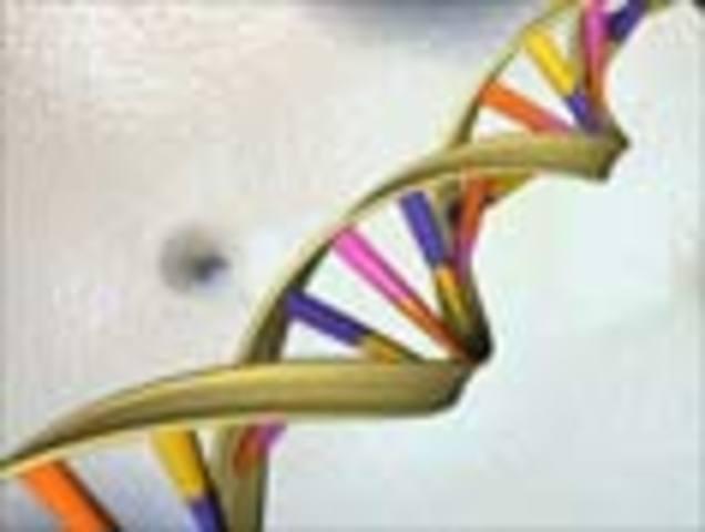 Nutrigenomic companies appear