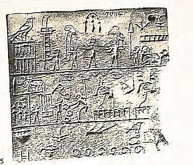 Se usaron simbolos graficos minoicos con mas de 135 pictogramas que incluyen figuras, brazos, animales, plantas y simbolos geométricos.