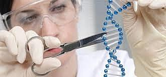 Era de la Ingeniería Genética