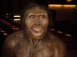 El poblamiento de Eurasia (teoría de la evolución del hombre)