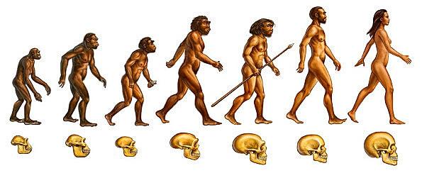 Teoría de la evolución del hombre (teoría creacionista)
