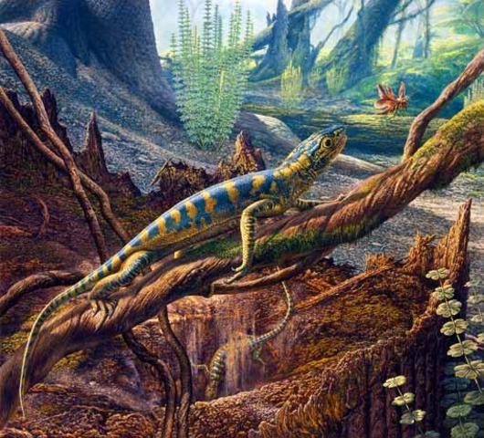 (350 mya) Reptiles