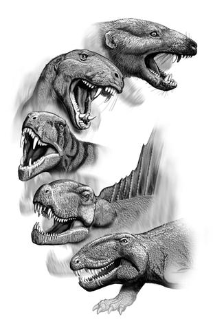 (220 mya) Mammals and Dinosours