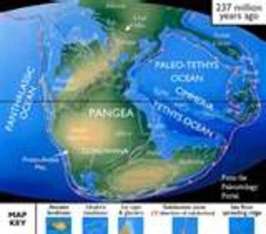 (200 mya) Pangea starts to break apart