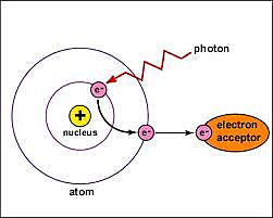 Einstein Atom