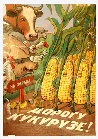 Дорогу кукурузе!