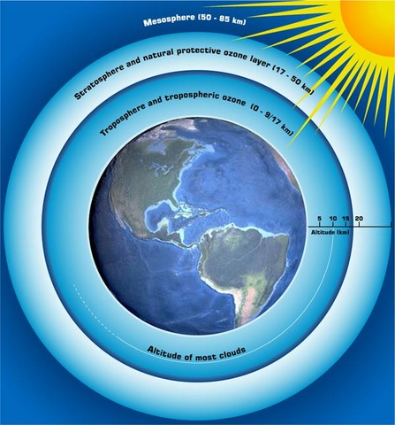 600 Million Years Ago: Ozone forms