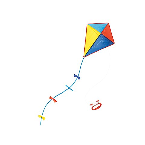 Amir & Hassan win the Kite Flying Contest