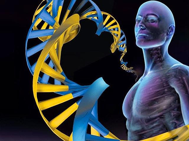 Геном человека прочитан!