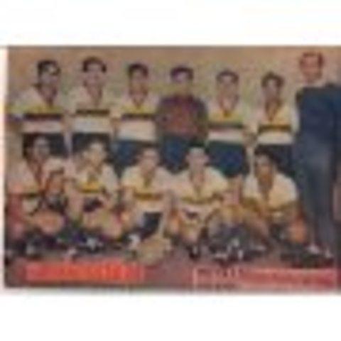 Campeonato Sudamericano de Selecciones 1945, sede: CHI campeón: ARG