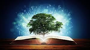 Naturalism Literature
