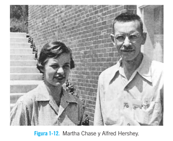 Alfred Hershey eta Martha Chasen esperimentuak