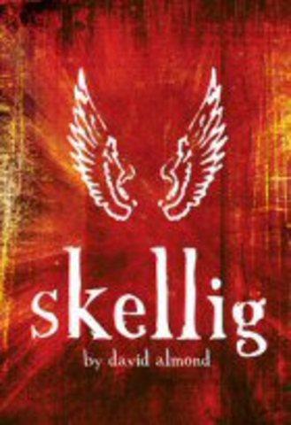 A Stage Version Of Skellig