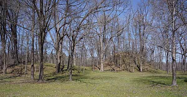 Designation of the Menard-Hodges Site