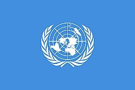 FN blir stiftet