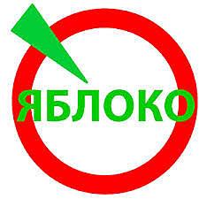Первый в рунете сайт политической партии