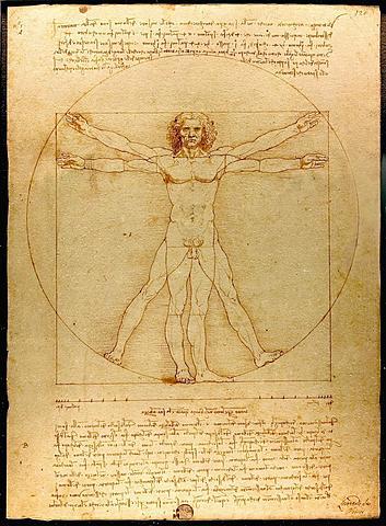 """Prof - La représentation du corps / Léonard de Vinci - """"L'Homme de Vitruve"""" (plume, encre et lavis sur papier, 34 x 26 cm, Gallerie dell'Accademia de Venise)"""