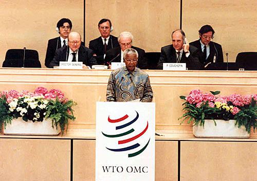 Creación OMC ( Organización Mundial del Comercio)