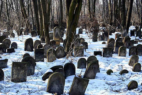 Зимой 1584—1585 годов погибло множество стрельцов и сам Семен Болховской. Численность отряда заметно сократилась.