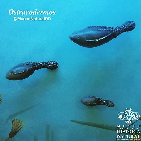 Período Ordovícico (Era Paleozoica)