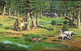 Época del Paleoceno (Era cenozoica, Período terciario)