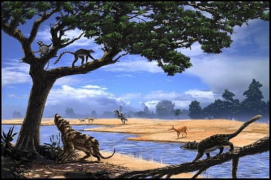 Época Eoceno (Era Mesozoica, Período Terciario)