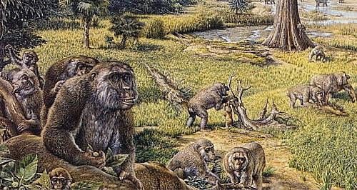 Época Mioceno (Era Cenozoica, Período Terciario)