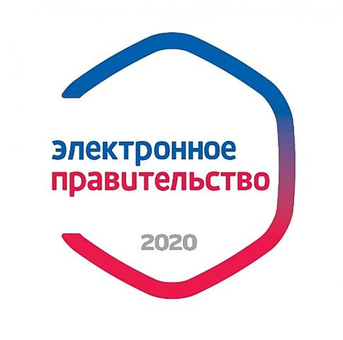 """Критика """"Электронного правительства"""""""
