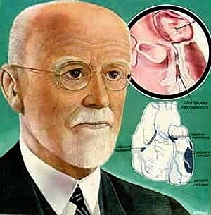 James Bryan Herrick -  Hechos Científicos