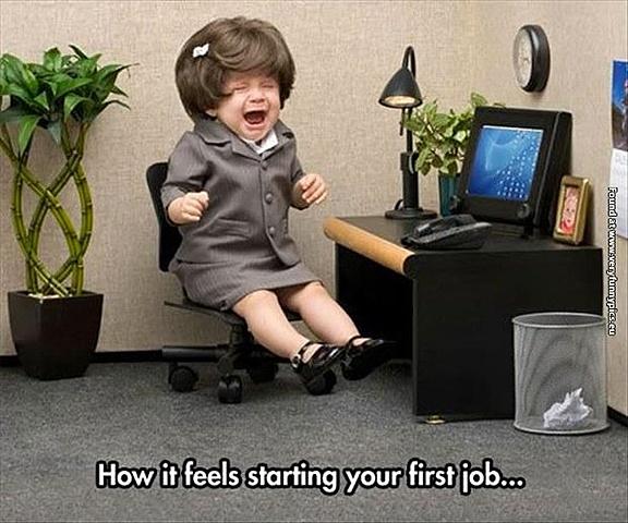 Jobs or careers