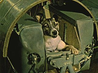 Laika the dog in Space.