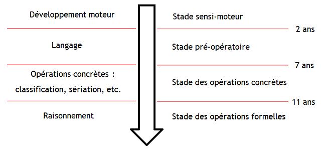 Les stades de développement (Piaget)