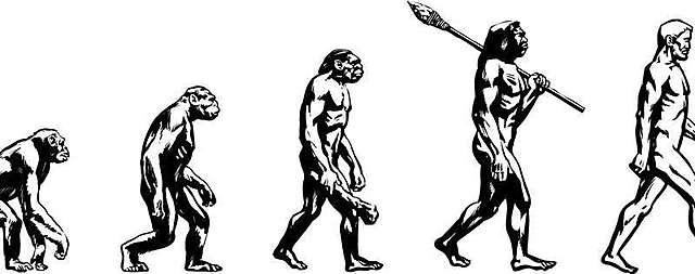 Evolving?