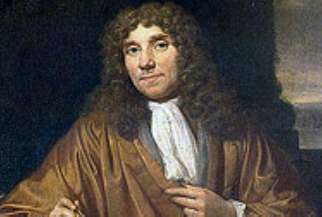 Van Leeuwenhoek observó por vez primera el espermatozoide, el músculo estriado, la estructura del cristalino y un cuerpo bacteriano.