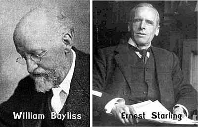 William Bayliss y Ernest Henry Starling