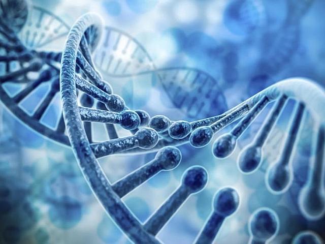 James Watson y Francis Crick publicaron el modelo del ADN.