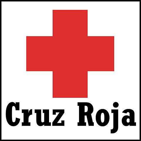 Se celebró la Conferencia Internacional de Ginebra, fue el primer paso del nacimiento de la Cruz Roja.