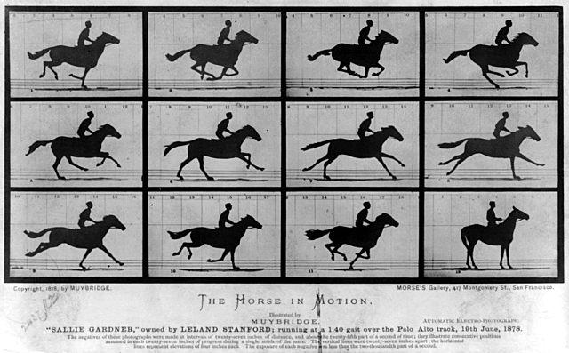 Eadweard Muybridge and Stop Motion Photography