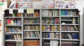 La biblioteca: tutti diversi...un'unica squadra timeline