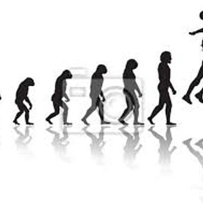 Historia y evolución del voleibol  timeline
