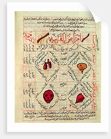 Islamic Golden Age (8th Century - 14th Century)